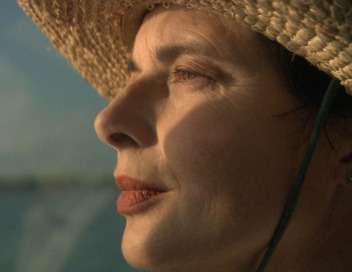 Isabella Rossellini : la vie d'un papillon My Wild Life