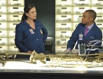 Bones Lettres mortes