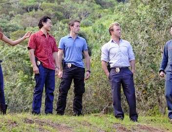 Hawaii 5-0 Kupale