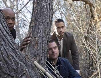 NCIS : Los Angeles L'arbre qui cache la forêt