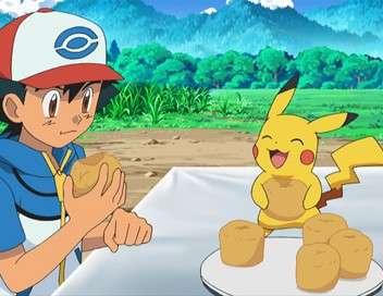 Pokémon : XY Un toiletteur pour Couafarel !