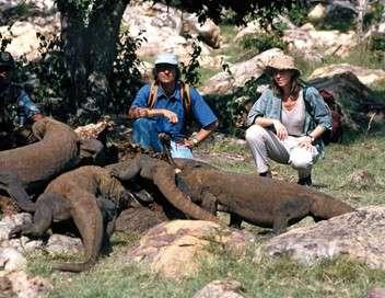 Les mondes d'Ushuaia Les superpouvoirs de la nature