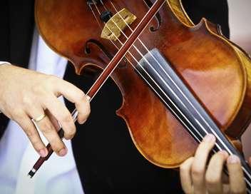 Schubert, lieder avec orchestre