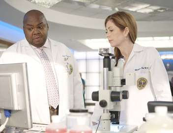 Body of Proof Conscience professionnelle