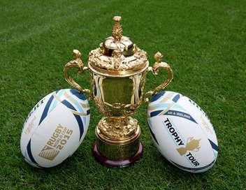 Afrique du sud pays de galles rugby coupe du monde - Coupe du monde rugby afrique du sud 1994 ...