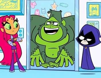 Teen Titans Go ! Oiseaux