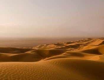 L'Arabie à l'état sauvage