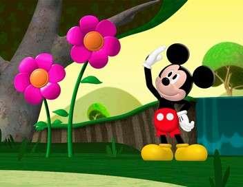 La maison de Mickey Mickey dans l'espace