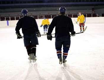 Championnat de la NHL Washington Capitals/Saint-Louis Blues