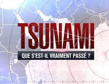 Tsunami : que s'est-il vraiment passé ?