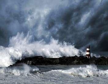 Tsunami 2004 : ils ont filmé la catastrophe du siècle
