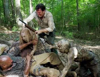 The Walking Dead Merci
