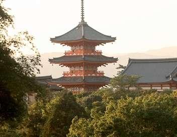 Panoramas : Japon, le retour aux sources