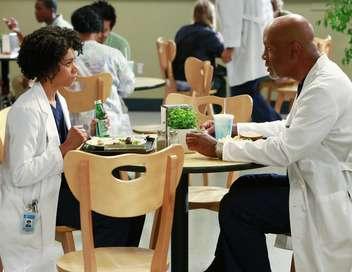 Grey's Anatomy Le puzzle de Maggie