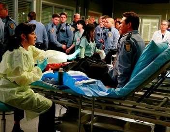 Grey's Anatomy Adultes et responsables