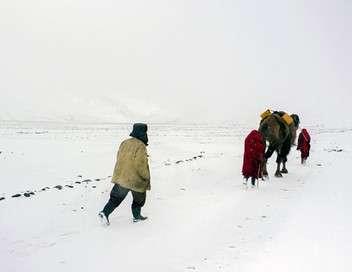 Sur la route de la Soie Hiver afghan