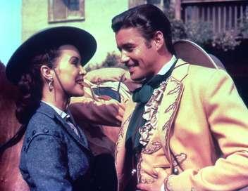Zorro La croix des Andes