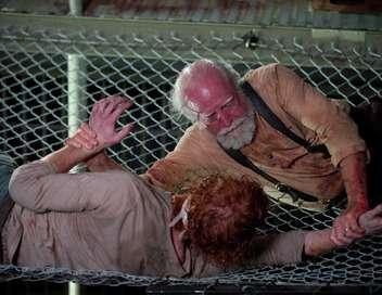The Walking Dead Internement