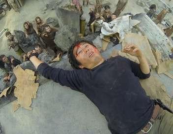 The Walking Dead Détenus