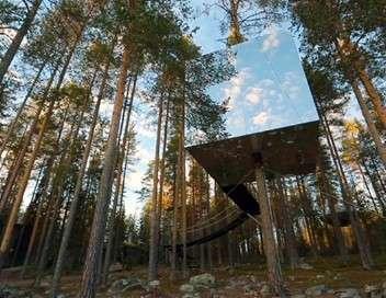 Sur un arbre perché, rêves de cabanes