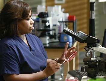 Grey's Anatomy Les maux magiques