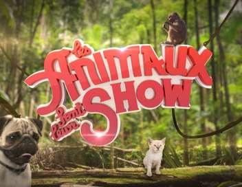 Les animaux font leur show du samedi 06 juin 2015 t l obs - Les animaux font leur show ...