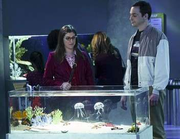 The Big Bang Theory Permutation platonique