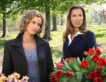 Femmes de loi Secrets de famille