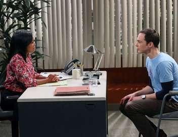 The Big Bang Theory Sheldon Cooper, professeur d'université
