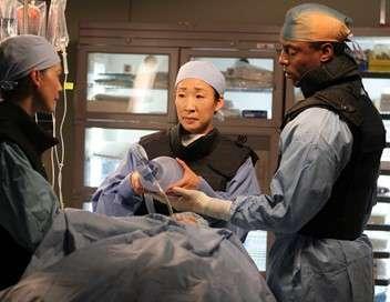 Grey's Anatomy Brume rose