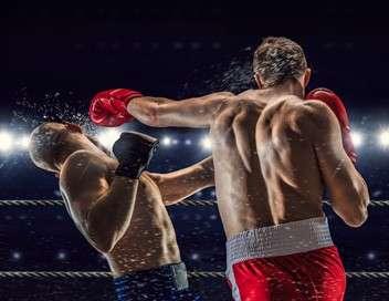 Fight+