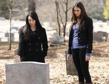Vampire Diaries Leurs vrais visages