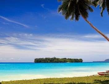 Vivre sur une île de rêve, des Français tentent l'aventure au soleil