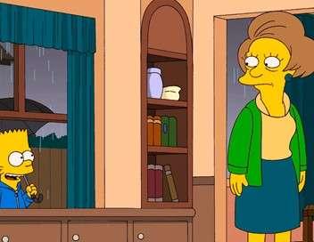 Les Simpson Les Ned et Edna unis