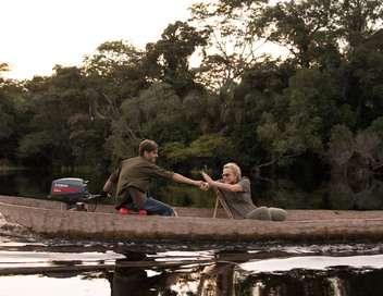 Muriel Robin et Chanee, sur la terre des bonobos