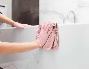 Cleaners, les experts du ménage Élodie et Éloïse
