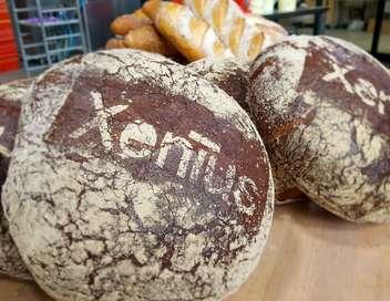 Xenius Notre pain quotidien