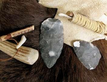 Xenius La paléogénétique : l'homme préhistorique qui sommeille en nous
