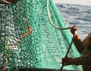 Thalassa Vivre de la mer, un défi quotidien