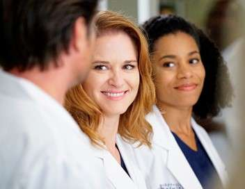 Grey's Anatomy La liste