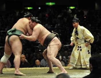 Fight Sports Grand Sumo