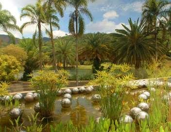 Étonnants jardins