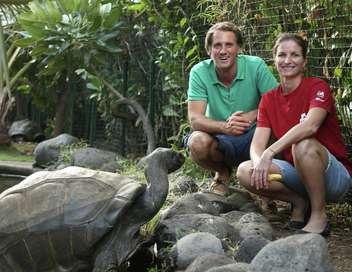 Échappées belles La Réunion, terre d'aventure