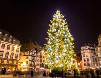 Des racines et des ailes Passion patrimoine : un hiver en Alsace