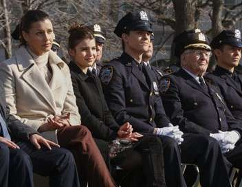 Blue Bloods Obsession