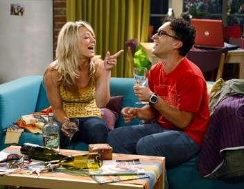 The Big Bang Theory Le grillon des champs