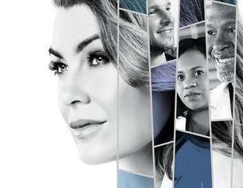 Grey's Anatomy 3 mariages pour le prix d'un