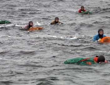 Corée : les femmes de la mer