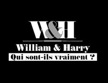 William & Harry, qui sont-ils vraiment ?