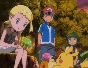 Pokémon : XY&Z Une gracieuse débutante !